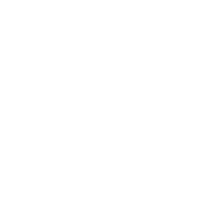 Alliance Experiential Counseling